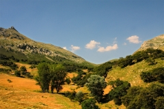 Caminos-de-naturaleza-Priego