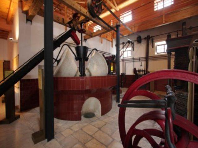 Museo del Olivar y del Aceite de Oliva