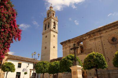 Iglesia Mayor de Santa Cruz y Museo de Arte Sacro