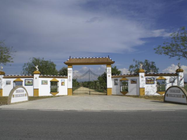 Yeguada Ayala