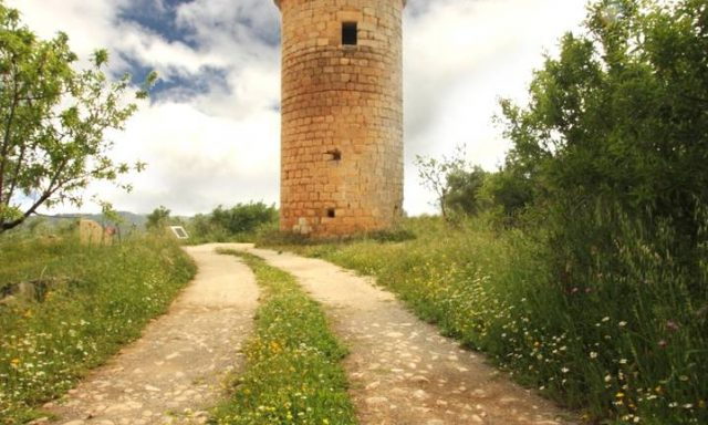 The Watchtower Trail
