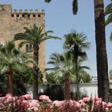 Castillo Condes de Cabra