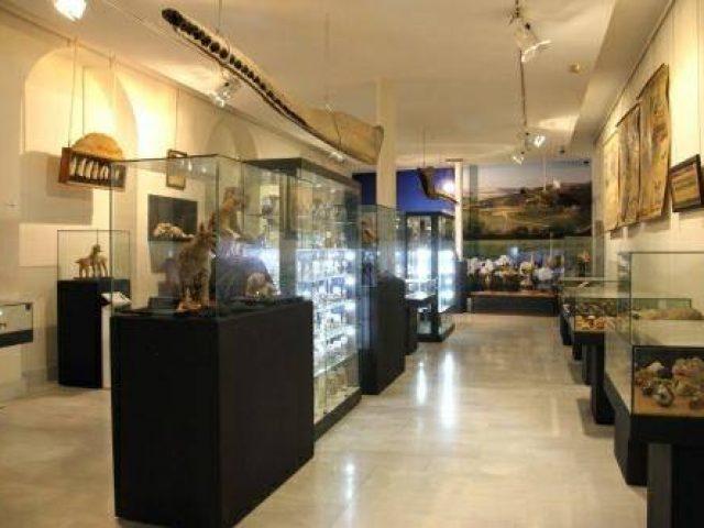 Museo Aguilar y Eslava